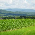 The lush mountains of Pennsylvania.