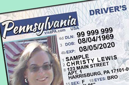 Licensed to Drive